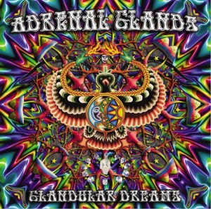 Adrenal Glands – Glandular Dreams