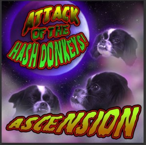 Ascension – Attack Of The Hash Donkeys