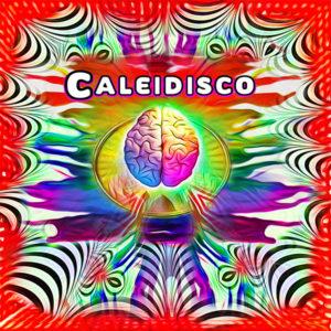 Caleidisco – Infinite Variations of Black & White