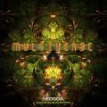 DJ Stevo – Multiverse