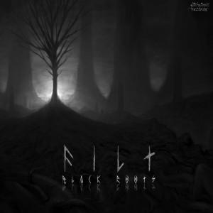 Filt – Black Roots