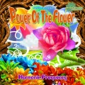 Harmonic Frequency – Power Of The Flower