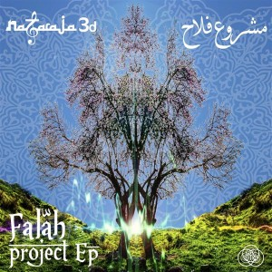 Nataraja3D – Falah Project