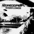Romeodark – Shadeflower