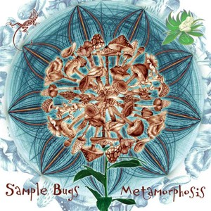 Sample Bugs – Metamorphosis