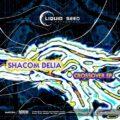 Shacom Delia – Crossover