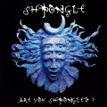 Shpongle – Are You Shpongled?