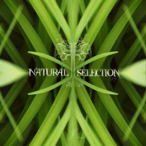 Natural Selection V.2