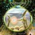 V/A – Psybration: Fundamental Progression