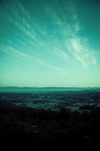 Mount Doug Vista